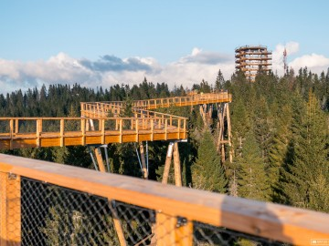 Visit a Treetop walk in Bachledka !
