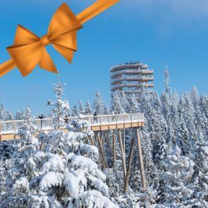 darčekovy poukaz chodnik bachledka oranž