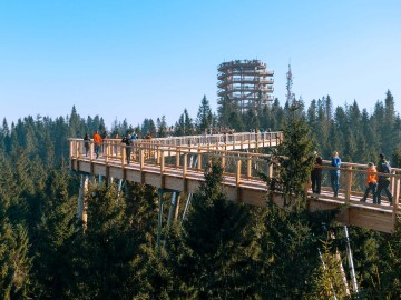 Treetop walk from 28.4.2018 open, so you can get there